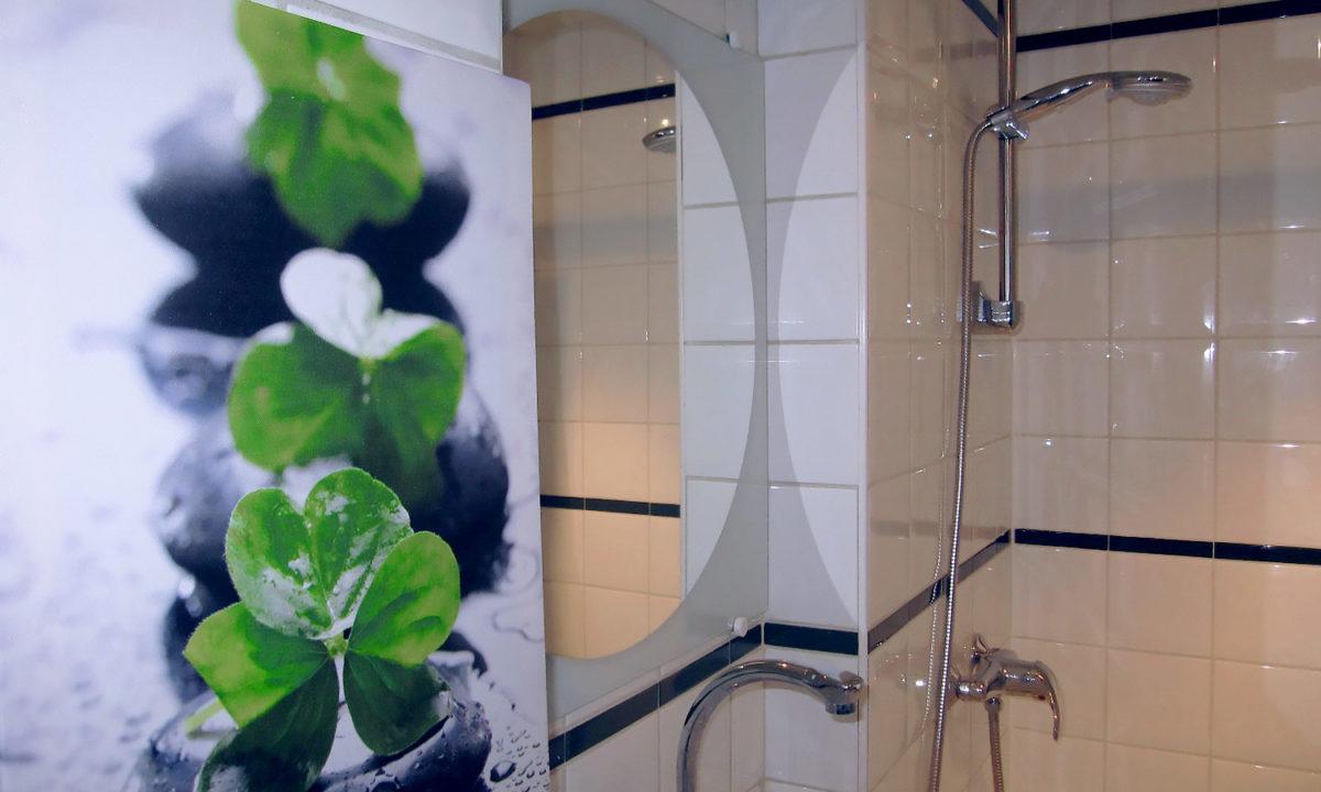 réalisations décoration salle d'eau sous les combles avec douche